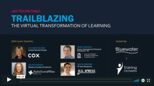 webinar - trailblazing the virtual transformation of learning